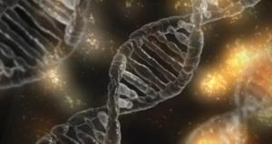 El microbioma abre nuevas posibilidades para el tratamiento de la leucemia